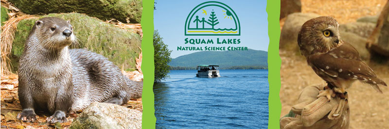 Loon Cruise - Squam Lakes Natural Science Center