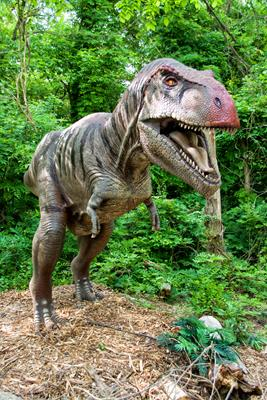 "Meet the Dinosaurs of ""Dinosaurs Alive!"""